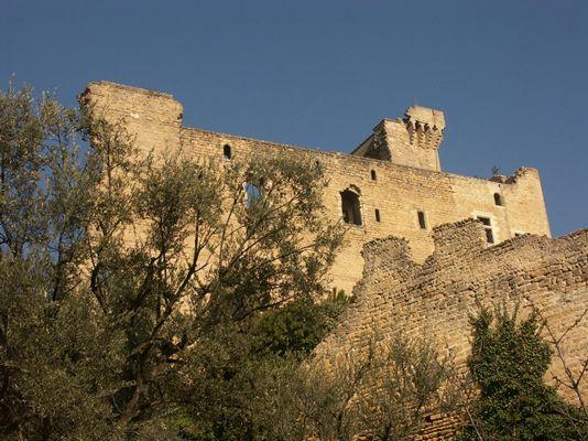 Le château de Châteauneuf-du-Pape