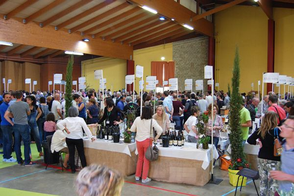 Les Printemps de Châteauneuf-du-Pape - Le salon 2015
