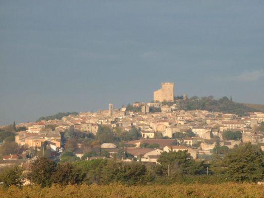 Château des Papes à l'automne