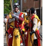 La véraison de Châteauneuf-du-Pape - Les chevaliers